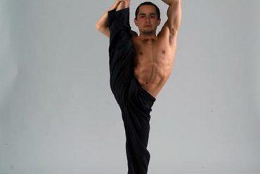 ¿Son lo mismo la elasticidad y la flexibilidad?